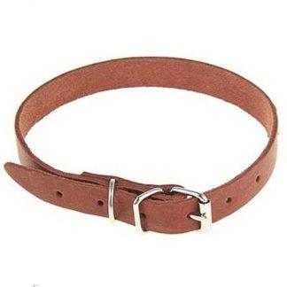 ошейник кожаный тисненый однослойный - 35 см.