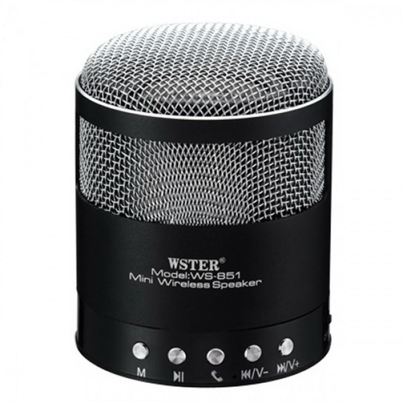 микрофон-караоке wster ws-858 - купить не дорого.